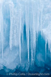 Icicles and melting ice, hanging from the edge of an blue iceberg.  Is this the result of climate change and global warming?. Brown Bluff, Antarctic Peninsula, Antarctica, natural history stock photograph, photo id 24799