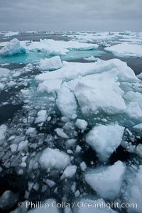 Pack ice and brash ice fills the Weddell Sea, near the Antarctic Peninsula.  This pack ice is a combination of broken pieces of icebergs, sea ice that has formed on the ocean. Southern Ocean, natural history stock photograph, photo id 24837