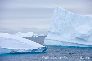 Icebergs, Paulet Island