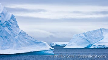 Icebergs and ice near Paulet Island