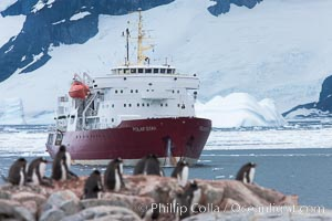Icebreaker M/V Polar Star, anchored near Peterman Island, Antarctica. Antarctic Peninsula, Pygoscelis papua, natural history stock photograph, photo id 25612