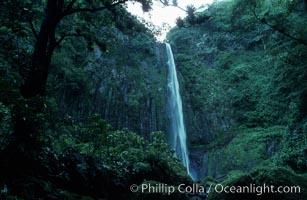 Iglesias Falls, waterfall, Cocos Island