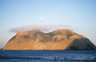 Isla Adentro and setting moon, daybreak, Guadalupe Island (Isla Guadalupe)