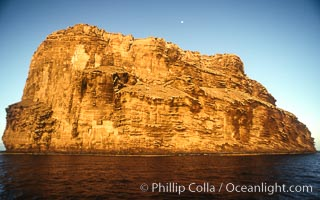 Isla Afuera, morning light, Guadalupe Island (Isla Guadalupe)