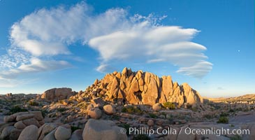 Image 26719, Sunset and boulders, Joshua Tree National Park.  Sunset lights the giant boulders and rock formations near Jumbo Rocks in Joshua Tree N.P. California, USA, Phillip Colla, all rights reserved worldwide. Keywords: boulder, california, cloud, desert, dusk, evening, joshua tree, joshua tree national park, jumbo rocks, landscape, national park, outdoors, outside, panorama, panoramic photo, rock, scene, scenery, scenic, sky, southwest, stone, sunset.