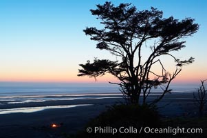 Sunset over the Pacific, Kalaloch Beach. Kalaloch, Olympic National Park, Washington, USA, natural history stock photograph, photo id 13789