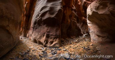 Kanarra Creek Canyon, Utah. Kanarra Creek, Kanarraville, Utah, USA, natural history stock photograph, photo id 32636