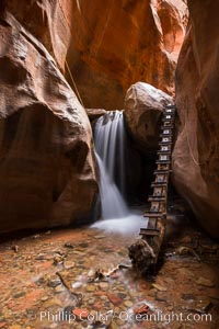 Kanarra Creek Falls in Kanarra Canyon, Utah. Kanarra Creek, Kanarraville, Utah, USA, natural history stock photograph, photo id 32638