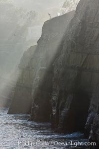 Sea cliffs and sea caves at sea level, made of sandstone and eroded by waves and tides. La Jolla, California, USA, natural history stock photograph, photo id 30173
