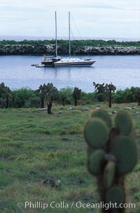 Boat Lammer Law anchored at South Plaza Island. South Plaza Island, Galapagos Islands, Ecuador, natural history stock photograph, photo id 05592