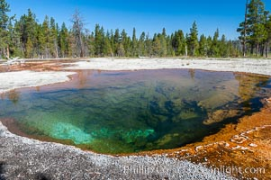 Lemon Spring along Firehole Lake Drive, Lower Geyser Basin, Yellowstone National Park, Wyoming