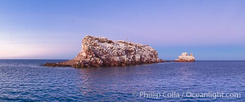Los Islotes Island, famous for its friendly colony of California sea lions, Espiritu Santo Biosphere Reserve, Sea of Cortez, Baja California, Mexico