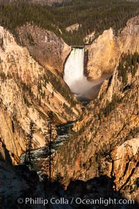 Lower Falls of the Yellowstone River. At 308 feet, the Lower Falls of the Yellowstone River is the tallest fall in the park. This view is from the famous and popular Artist Point on the south side of the Grand Canyon of the Yellowstone, Yellowstone National Park, Wyoming