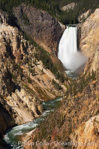 The Lower Falls of the Yellowstone River drops 308 feet at the head of the Grand Canyon of the Yellowstone. A long exposure blurs the fast-flowing water.  The canyon is approximately 10,000 years old, 20 miles long, 1000 ft deep, and 2500 ft wide. Its yellow, orange and red-colored walls are due to oxidation of the various iron compounds in the soil, and to a lesser degree, sulfur content, Yellowstone National Park, Wyoming