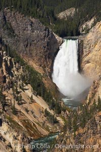 The Lower Falls of the Yellowstone River drops 308 feet at the head of the Grand Canyon of the Yellowstone. The canyon is approximately 10,000 years old, 20 miles long, 1000 ft deep, and 2500 ft wide. Its yellow, orange and red-colored walls are due to oxidation of the various iron compounds in the soil, and to a lesser degree, sulfur content, Yellowstone National Park, Wyoming