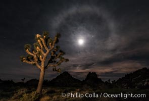 Lunar corona, or moon halo, also known as lunar nimbus, icebow or gloriole, occurring 22 degrees around the moon.  Observed during the full lunar eclipse of April 14/15 2014.  Planet Mars at upper right, blue star Spica to the right of the moon, Joshua Tree National Park, California