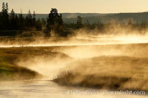 Madison River steaming in the cold air, sunrise, autumn, tall grasses and golden light, Yellowstone National Park, Wyoming