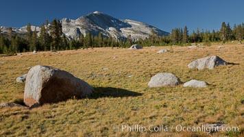 Mammoth Peak (12,117') rises above grassy meadows and granite boulders near Tioga Pass, Yosemite National Park, California