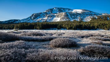 Mammoth Peak over Tuolumne Meadows, Tioga Pass, Yosemite National Park