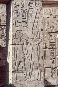Wall detail, Medinet Habu, Luxor, Egypt