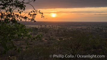 Meru National Park sunrise landscape