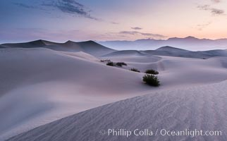 Mesquite Dunes sunrise, dawn, clouds and morning sky, sand dunes. Stovepipe Wells, Death Valley National Park, California, USA, natural history stock photograph, photo id 28681