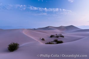 Mesquite Dunes sunrise, dawn, clouds and morning sky, sand dunes. Stovepipe Wells, Death Valley National Park, California, USA, natural history stock photograph, photo id 28683