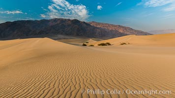 Mesquite Dunes sunrise, Death Valley. Stovepipe Wells, Death Valley National Park, California, USA, natural history stock photograph, photo id 28690