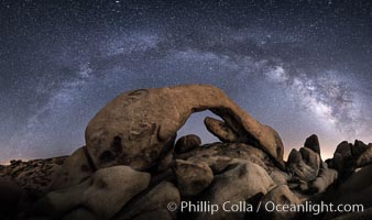 Milky Way at Night over Arch Rock, Joshua Tree National Park. California, USA, natural history stock photograph, photo id 29196