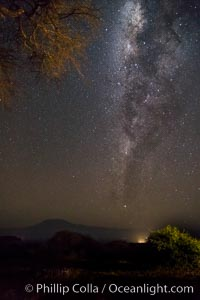 Milky Way over Mount Kilimanjaro, viewed from Amboseli National Park