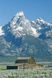 Old barn along Mormon Row below the Teton Range, Grand Teton National Park, Wyoming