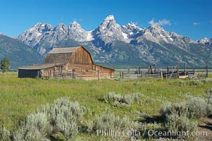 An old barn at Mormon Row is lit by the morning sun with the Teton Range rising in the distance. Mormon Row, Grand Teton National Park, Wyoming, USA, natural history stock photograph, photo id 12999