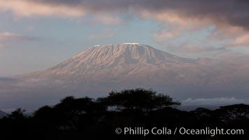 Mount Kilimanjaro, Tanzania, viewed from Amboseli NP, Kenya. Amboseli National Park, natural history stock photograph, photo id 29539