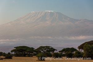 Mount Kilimanjaro, Tanzania, viewed from Amboseli NP, Kenya. Amboseli National Park, Kenya, natural history stock photograph, photo id 29601