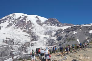Hikers ascend the Skyline Trail below Nisqually Glacier and Mount Rainier, Mount Rainier National Park, Washington