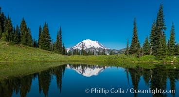 Mount Rainier reflected in Tipsoo Lake. Tipsoo Lakes, Mount Rainier National Park, Washington, USA, natural history stock photograph, photo id 28735
