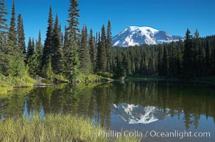 Mount Rainier is reflected in the calm waters of Reflection Lake, early morning, Mount Rainier National Park, Washington