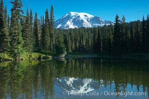 Image 13860, Mount Rainier is reflected in the calm waters of Reflection Lake, early morning. Reflection Lake, Mount Rainier National Park, Washington, USA