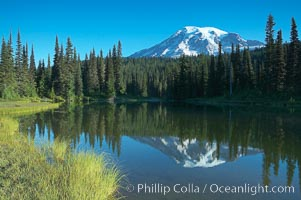 Mount Rainier is reflected in the calm waters of Reflection Lake, early morning. Mount Rainier National Park, Washington, USA, natural history stock photograph, photo id 13861