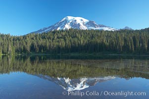 Mount Rainier is reflected in the calm waters of Reflection Lake, early morning. Reflection Lake, Mount Rainier National Park, Washington, USA, natural history stock photograph, photo id 13952