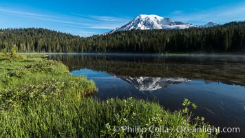 Mount Rainier is reflected in the calm waters of Reflection Lake, early morning. Reflection Lake, Mount Rainier National Park, Washington, USA, natural history stock photograph, photo id 28708
