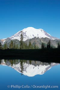 Mount Rainier is reflected in Upper Tipsoo Lake. Tipsoo Lakes, Mount Rainier National Park, Washington, USA, natural history stock photograph, photo id 13832