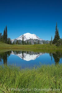 Mount Rainier is reflected in Upper Tipsoo Lake. Tipsoo Lakes, Mount Rainier National Park, Washington, USA, natural history stock photograph, photo id 13833