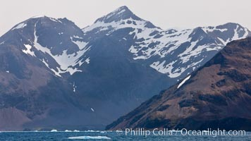 Mountains, glaciers and ocean, the rugged and beautiful topography of South Georgia Island. Grytviken, South Georgia Island, natural history stock photograph, photo id 24550