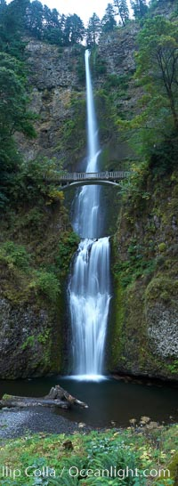 Multnomah Falls.  Plummeting 620 feet from its origins on Larch Mountain, Multnomah Falls is the second highest year-round waterfall in the United States.  Nearly two million visitors a year come to see this ancient waterfall making it Oregon's number one public destination. Multnomah Falls, Columbia River Gorge National Scenic Area, Oregon, USA, natural history stock photograph, photo id 19314