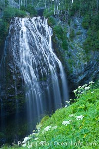 Narada Falls. Narada Falls, Mount Rainier National Park, Washington, USA, natural history stock photograph, photo id 13839