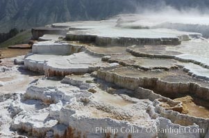 Steam rises from the travertine terraces of New Blue Spring, part of the Mammoth Hot Springs complex. Yellowstone National Park, Wyoming, USA, natural history stock photograph, photo id 07281