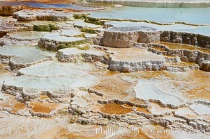 New Blue Spring and its travertine terraces, part of the Mammoth Hot Springs complex. Mammoth Hot Springs, Yellowstone National Park, Wyoming, USA, natural history stock photograph, photo id 13626