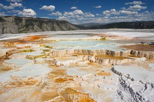 New Blue Spring and its travertine terraces, part of the Mammoth Hot Springs complex. Mammoth Hot Springs, Yellowstone National Park, Wyoming, USA, natural history stock photograph, photo id 13628