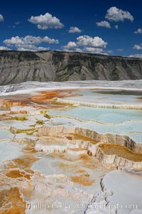 New Blue Spring and its travertine terraces, part of the Mammoth Hot Springs complex. Mammoth Hot Springs, Yellowstone National Park, Wyoming, USA, natural history stock photograph, photo id 13631